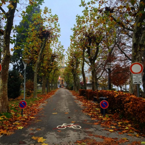 Romantik Yol: ALMANYA