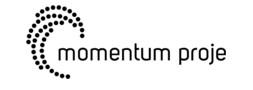 momentum proje