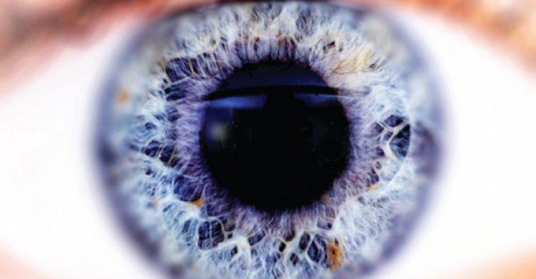İnsan Gözü Kaç Megapikseldir?