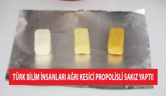 Türk Bilim İnsanları Ağrı Kesici Propolisli Sakız Yaptı!
