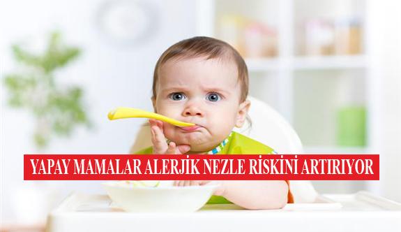 Yapay Mamalar Alerjik Nezle Riskini Artırıyor