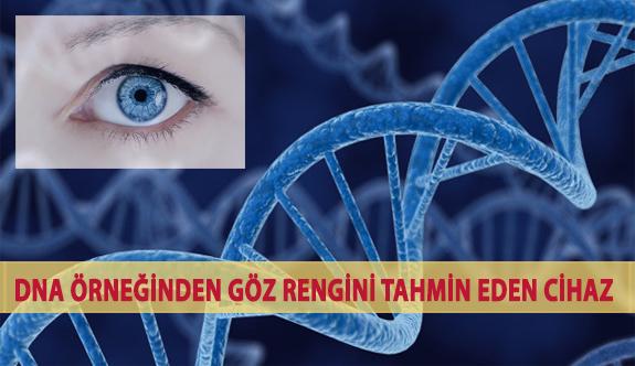 DNA Örneğinden Göz Rengini Tahmin Eden Cihaz