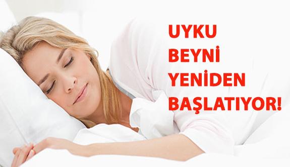 Uyku Beyni Yeniden Başlatıyor!