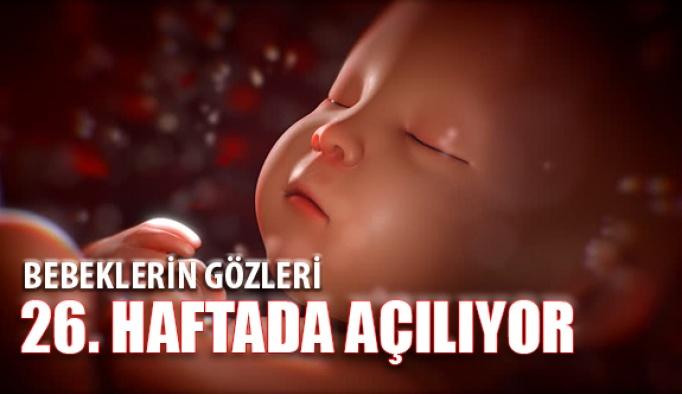 Bebeğin Göz Kapağı Hareketleri 26. Haftada Başlıyor