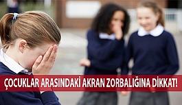 Çocuklar Arasındaki Akran Zorbalığına Dikkat!
