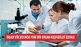 İnsan Vücudunda Yeni Bir Organ Keşfedildi İddiası
