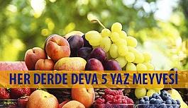 Her Derde Deva 5 Yaz Meyvesi