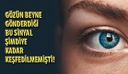 Gözün Beyne Şimdiye Kadar Bilinmeyen Bir Sinyal Gönderdiği Keşfedildi