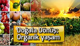 Doğala Dönüş; Organik yaşam