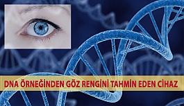 DNA Örneğinden Göz Rengini Tahmin Eden...