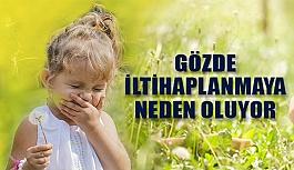 Çocuklarda Polen Alerjisi Göz İltihabına...