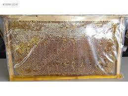 organik yayla balı üreticiden kg 50 tl  erzincan çayırlı yöresi katkısız